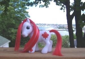 Canada Day Pony